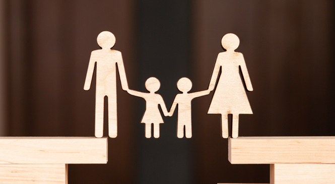 YEAR IN REVIEW 2020: FAMILY LAW